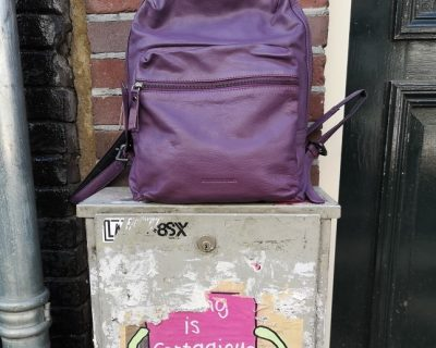 Sticks & Stones Brooklyn backpack Purple